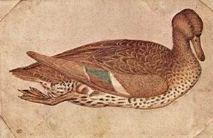 Птицы, рисунки для батика